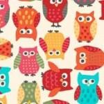 1410_Q_owls