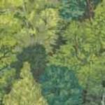 1353_G_TREES