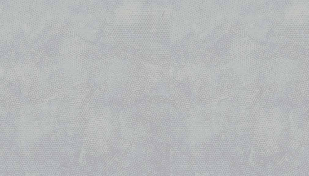 2/1867C5 Pale Silver