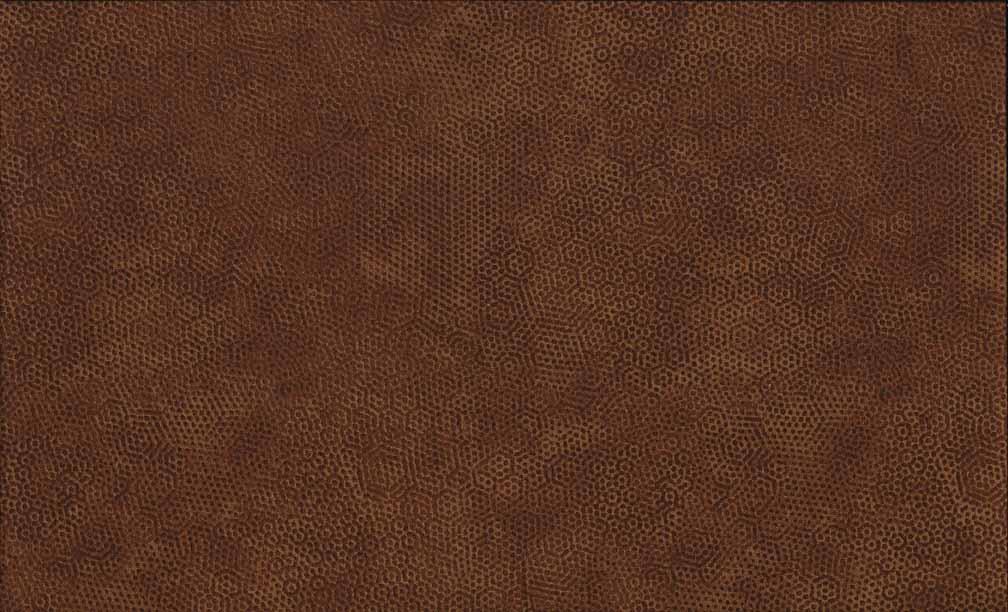2/1867N4 Bruin