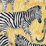 1536_1_Zebras