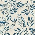 1748_B_songbird