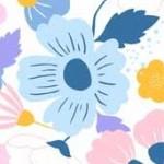 floralsplendor_hero