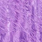 2_3476_P_Texture