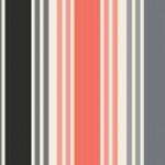 1765_S_multi stripe