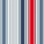 1765_B_multi stripe