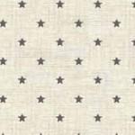 1615_S3_mini star