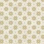 1789_Q1_nordic snowflake
