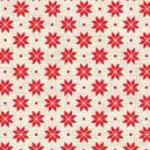 1789_R2_nordic snowflake