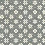 1789_S7_nordic snowflake