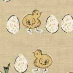 1779_Y_eggs & chicks