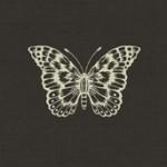 1863_S_Butterfly