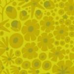 2_8637_G_reef_in_algae