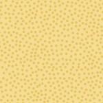 302_Q5_Tiny Dot