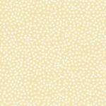 302_Q6_Tiny-Dot