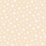 306_P3_Star
