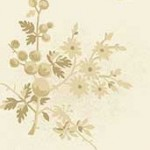 8824_L_freshberries_parchment