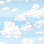 1367_B2_Sky
