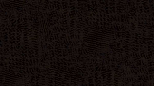 2/1867N9 NEW Noir