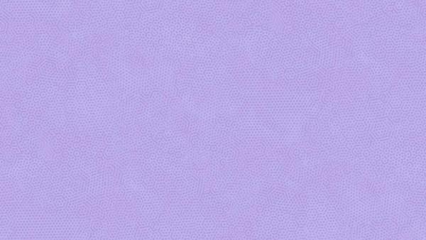 2/1867P22 NEW Baby Viola