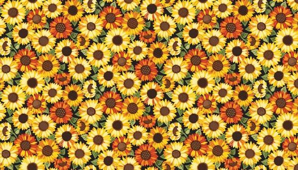 2026/1 Sunflowers