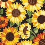 2026_1_Sunflowers