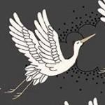 2047_S_cranes