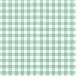920_T62_Gingham
