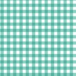 920_T6_gingham