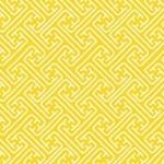 2050_Y_lattice