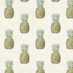 2074_Q_pineapple