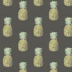 2074_S_pineapple
