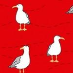 2083_R_seagulls
