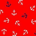 2085_R_anchors
