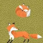 2172_G_Foxes
