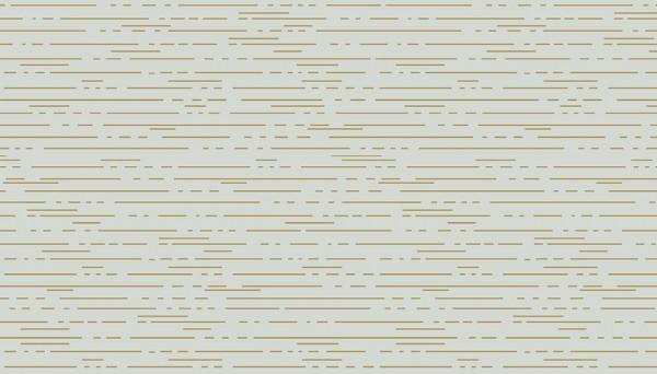 2/9010ML Dashes – Dust