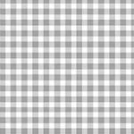 920_S65_Gingham