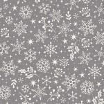 2221_S_snowflake