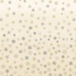 2248_Q_Ombre-Snowflake