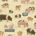 2292_1_Pigs