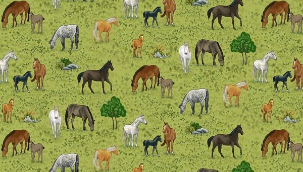 2295/1 Horses