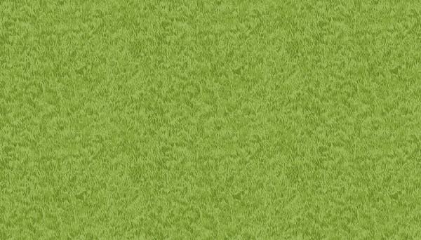 276/G3 New Grass