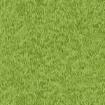 276_G3_Grass
