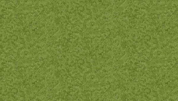 276/G5 Grass