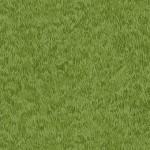 276_G5_Grass