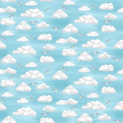 2344/1 Clouds