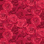 2321_R_Packed-Rose