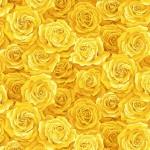 2321_Y_Packed-Rose