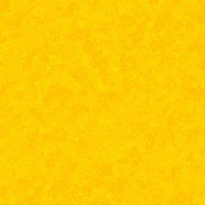 2800/Y08 Spraytime Bright Yellow