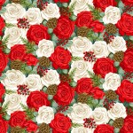 2371_1_Christmas-Rose